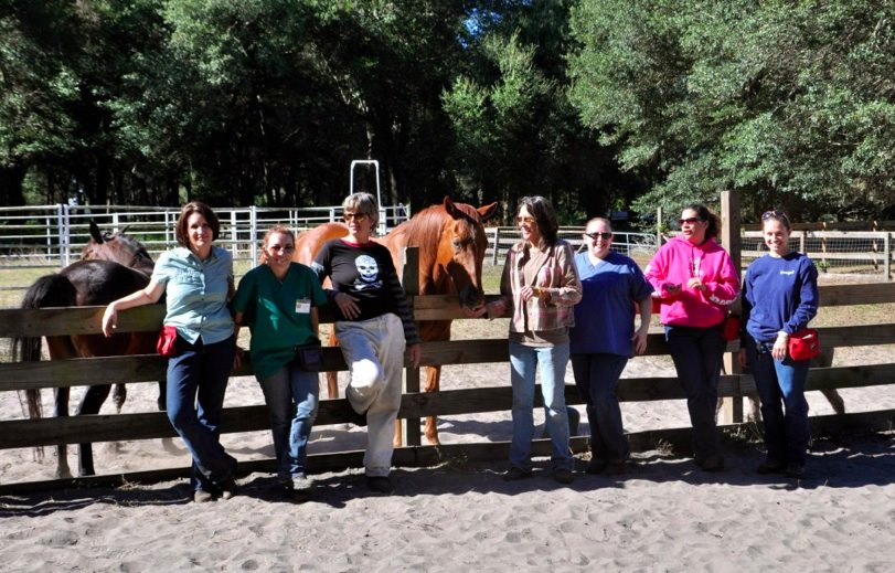 Students at Equine Academic Residency Lab at college Dream Pond Field Station